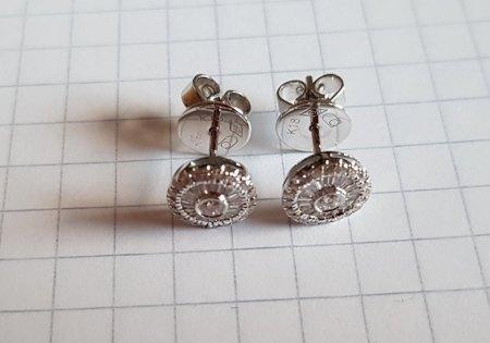 Ohrringe aus 750 Weißgold mit Diamanten, der ungefähre Wert?