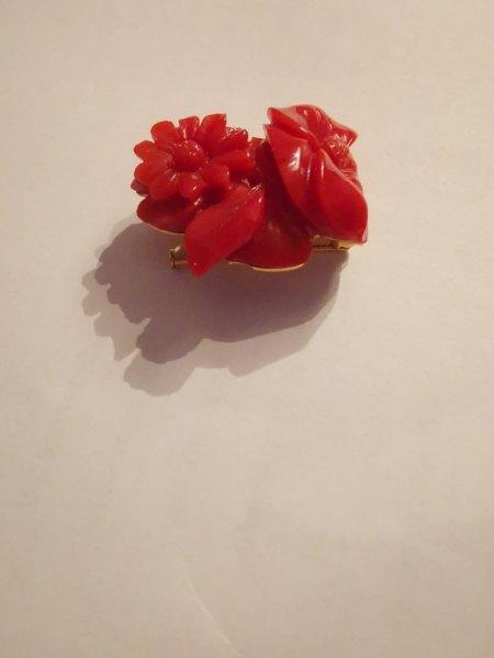 Rote Korallenbrosche - ich bitte um Wertschätzung